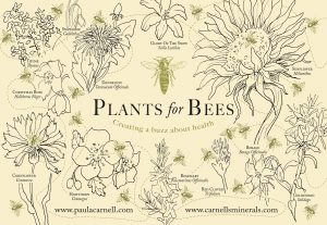 Plants for bees Tea Towel by Paula Carnell
